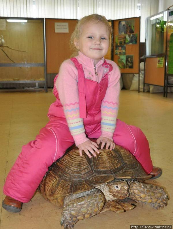 Девочка на черепахе