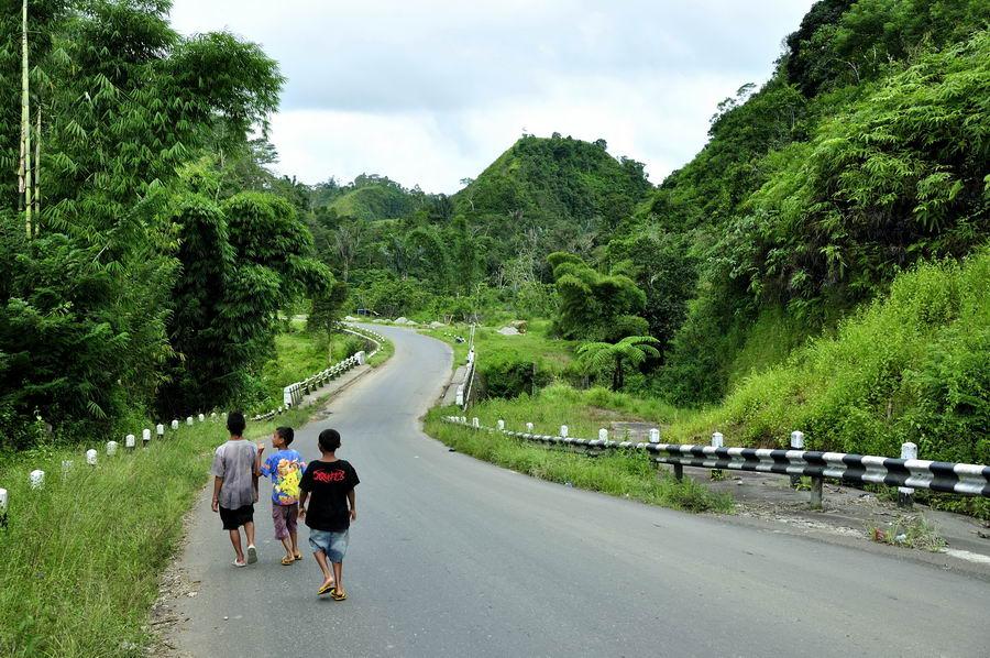Мост в Индонезии
