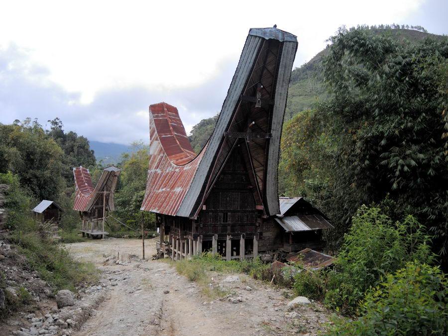 Традиционный дом Тораджа