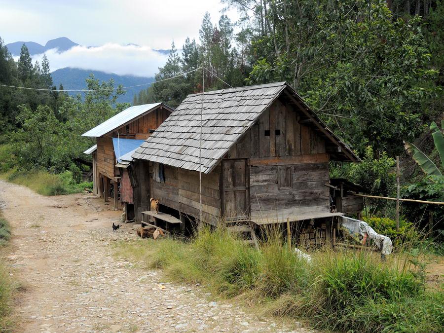 Дом с крышей из досок