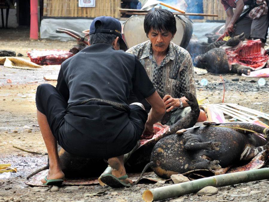 Разделка свиней
