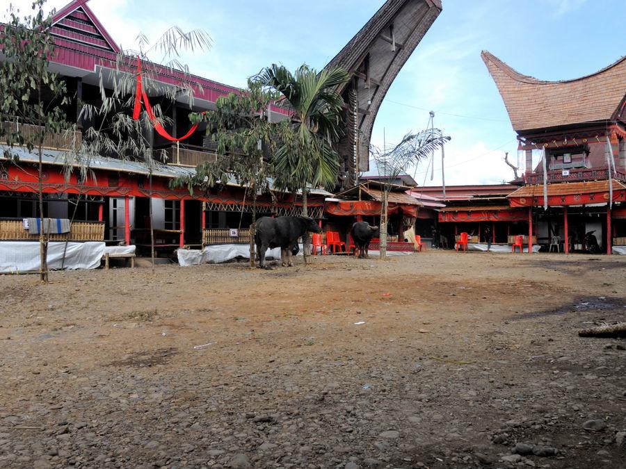 Деревня Тораджей