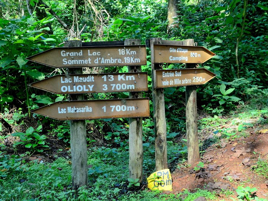 Тропинки Национальный парк «Янтарная гора» (amber mountain national park) на Мадагаскаре Национальный парк «Янтарная гора» (Amber Mountain National Park) на Мадагаскаре DSC 5456