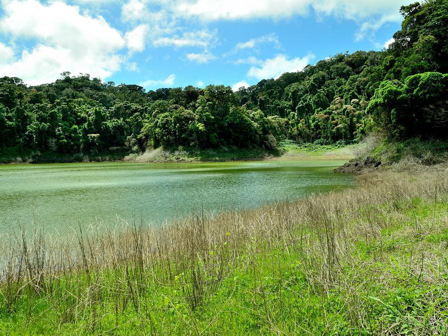 Озеро Национальный парк «Янтарная гора» (amber mountain national park) на Мадагаскаре Национальный парк «Янтарная гора» (Amber Mountain National Park) на Мадагаскаре DSC 5492