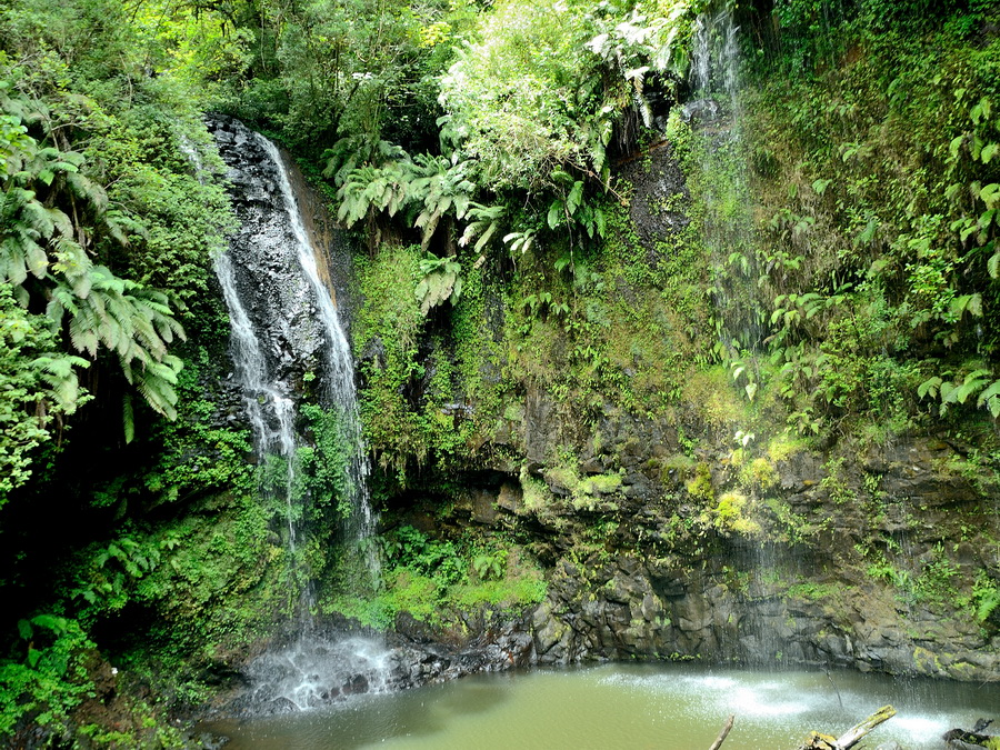 Водопад Национальный парк «Янтарная гора» (amber mountain national park) на Мадагаскаре Национальный парк «Янтарная гора» (Amber Mountain National Park) на Мадагаскаре DSC 5562