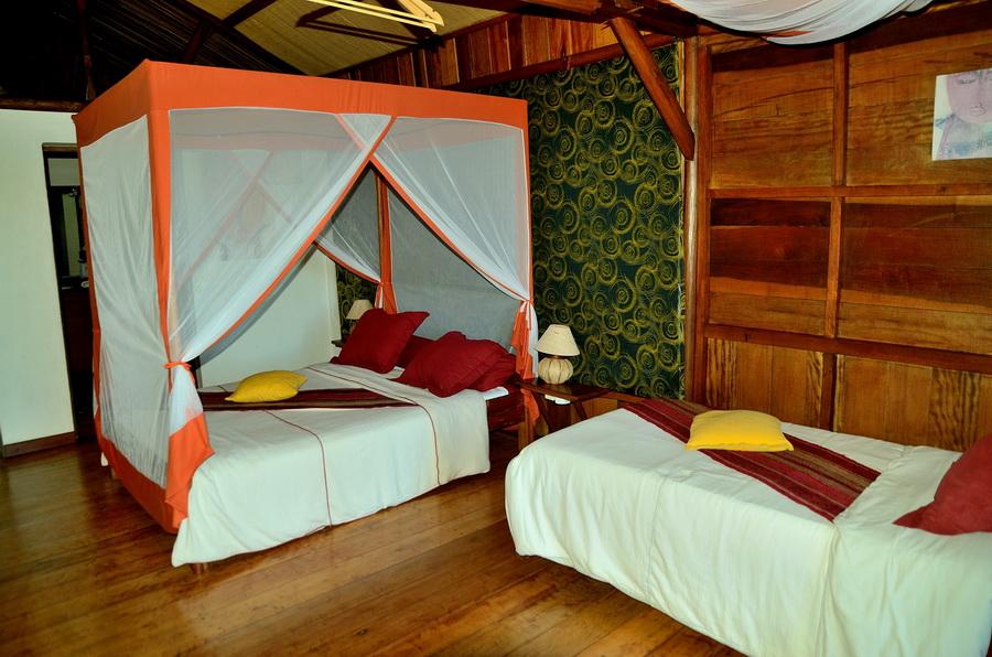 Красота Национальный парк «Янтарная гора» (amber mountain national park) на Мадагаскаре Национальный парк «Янтарная гора» (Amber Mountain National Park) на Мадагаскаре DSC 5965