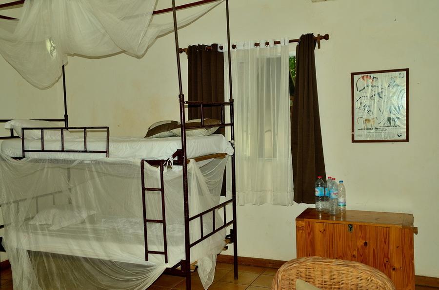 Кровать Анкарафанцик Национальный парк Анкарафанцика на Мадагаскаре DSC 6760