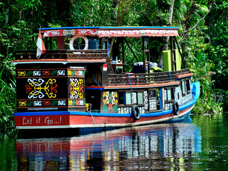 Лодка клоток Танджунг Путинг Национальный парк Танджунг Путинг (Tanjung Puting) в Индонезии DSC 1115