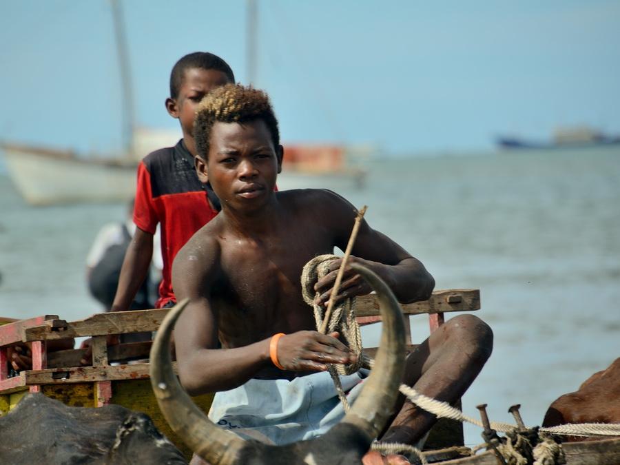 Мальгаш Анакао Анакао (Anakao) и остров Нуси Ве (Nosy Ve) на Мадагаскаре DSC 9275