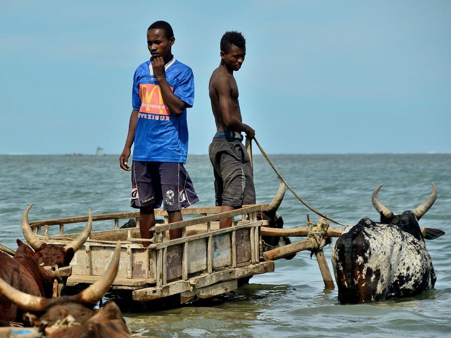 Анакао Анакао Анакао (Anakao) и остров Нуси Ве (Nosy Ve) на Мадагаскаре DSC 9303