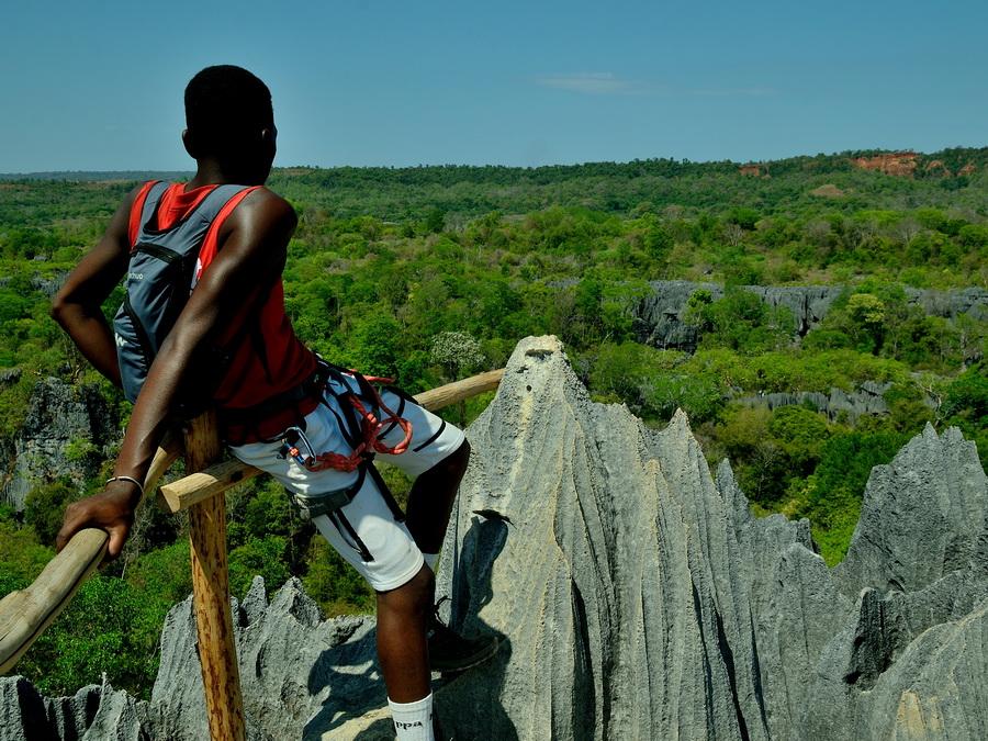 Каменный лас на Мадагаскаре