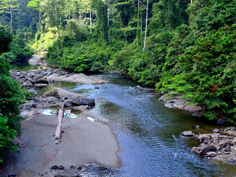 Вид на реку Сегама