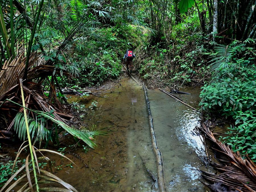 Переход через болото