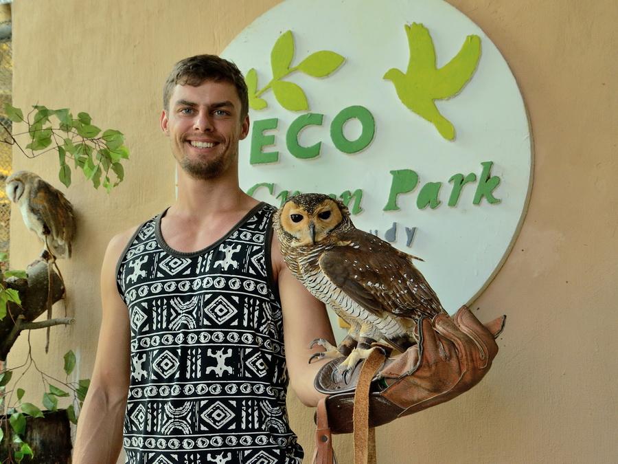 Фото с совой