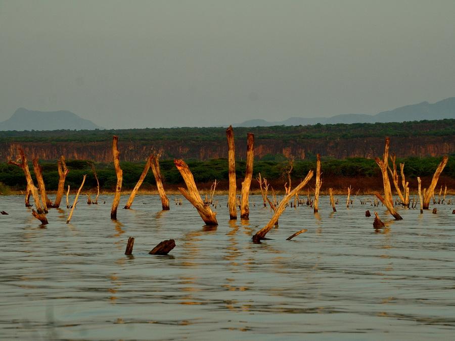 Затопленый берег